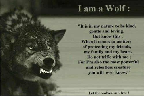 Memes Wolf And Wolves I Am A It Is In My