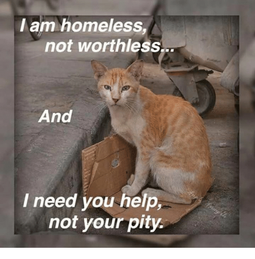 they may be homeless but they are not worthless The homeless, because they have broken a camping ordinance (because they have no way of obtaining an apartment), they are denied the right to sleep on public property or (in some cities) on private property, even if they have permission.