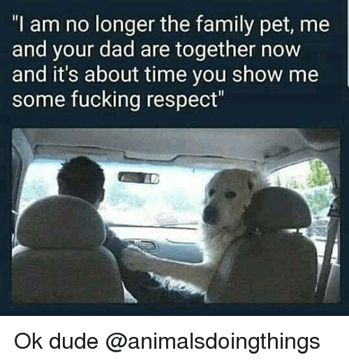 "Dad, Dude, and Family: ""I am no longer the family pet, me  and your dad are together now  and it's about time you show me  some fucking respect"" Ok dude @animalsdoingthings"