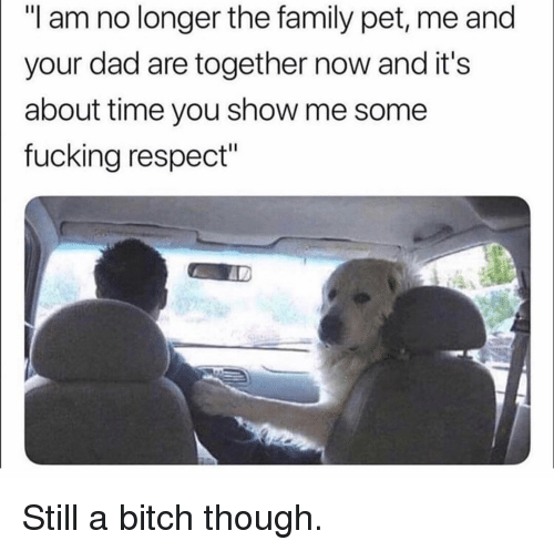 "Bitch, Dad, and Family: ""I am no longer the family pet, me and  your dad are together now and it's  