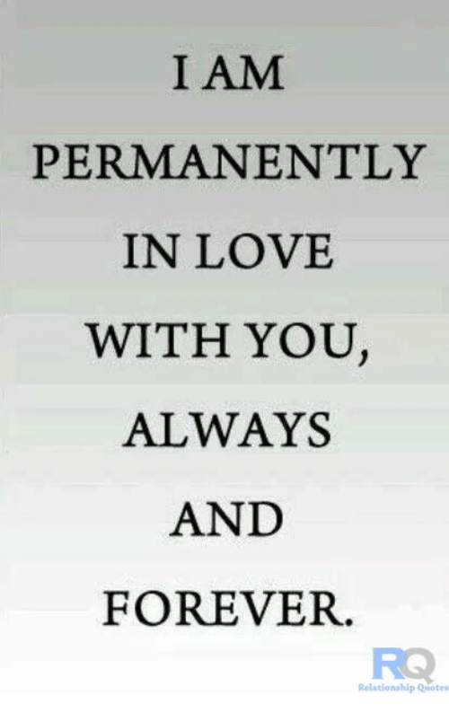 Forever In Love Quotes Adorable I AM PERMANENTLY IN LOVE WITH YOU ALWAYS AND FOREVER Relationship