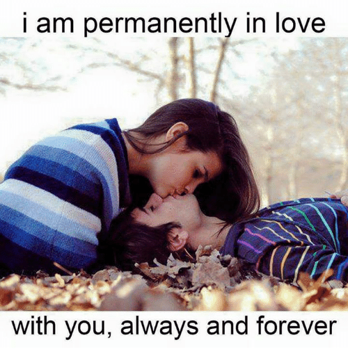 I Am Permanently In Love With You Always And Forever Love Meme On
