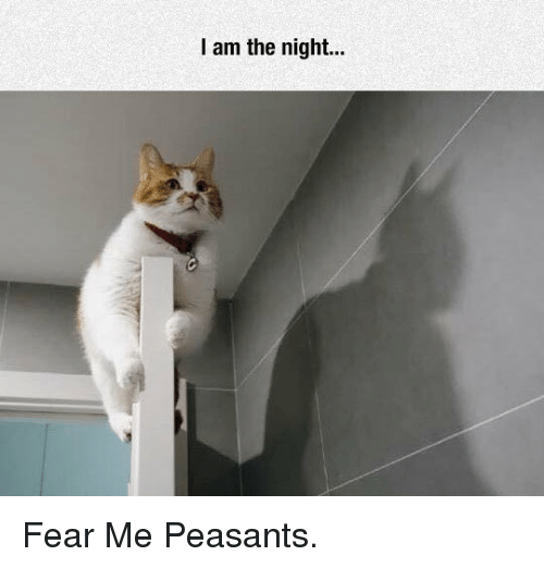 Fear, Peasants, and  Night: I am the night... <p>Fear Me Peasants.</p>