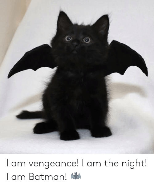 Batman, Vengeance, and  Night: I am vengeance! I am the night! I am Batman! 🦇