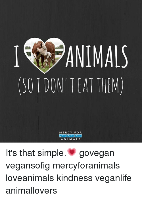 Animals, Memes, and Kindness: I ANIMALS  (50 DON'TEAT THEM)  MERCY FOR  ANIMALS It's that simple.💗 govegan vegansofig mercyforanimals loveanimals kindness veganlife animallovers