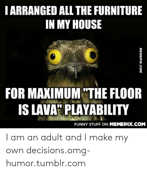"""Funny, My House, and Omg: I ARRANGED ALL THE FURNITURE  IN MY HOUSE  FOR MAXIMUM """"THE FLOOR  IS LAVA"""" PLAYABILITY  FUNNY STUFF ON MEMEPIX.COM  МЕМЕРIХ.Сом I am an adult and I make my own decisions.omg-humor.tumblr.com"""