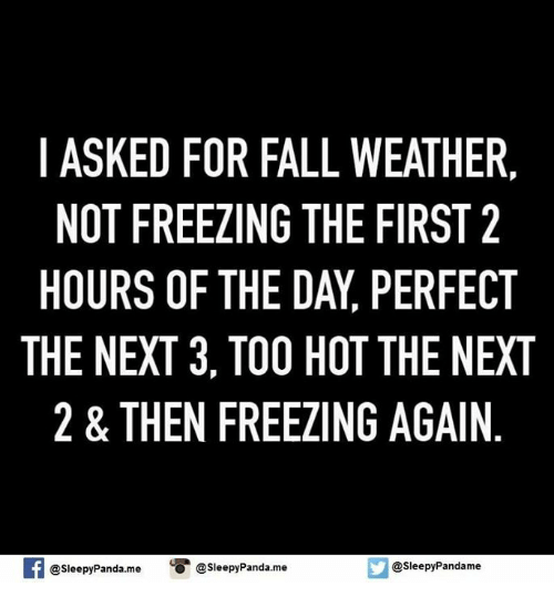 i asked for fall weather not freezing the first 2 6365449 ✅ 25 best memes about fall weather fall weather memes