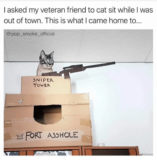 Memes, Pop, and Home: I asked my veteran friend to cat sit while I was  out of town. This is what I came home to...  @ pop smoke official  5NIPER  TOWER  FORT ASSHOLE