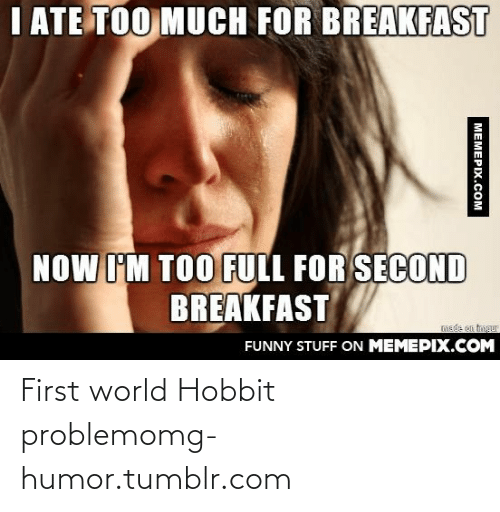 Funny, Omg, and Too Much: I ATE TOO MUCH FOR BREAKFAST  NOW I'M TOO FULL FOR SECOND  BREAKFAST  FUNNY STUFF ON MEMEPIX.COM  MEMEPIX.COM First world Hobbit problemomg-humor.tumblr.com