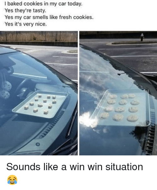 I Baked Cookies in My Car Today Yes They're Tasty Yes My Car ...