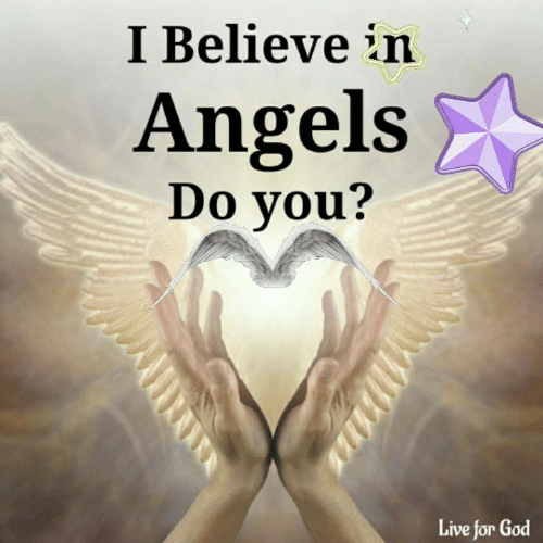 God, Memes, and Angels: I Believe in  Angels  Do you?  Live for God