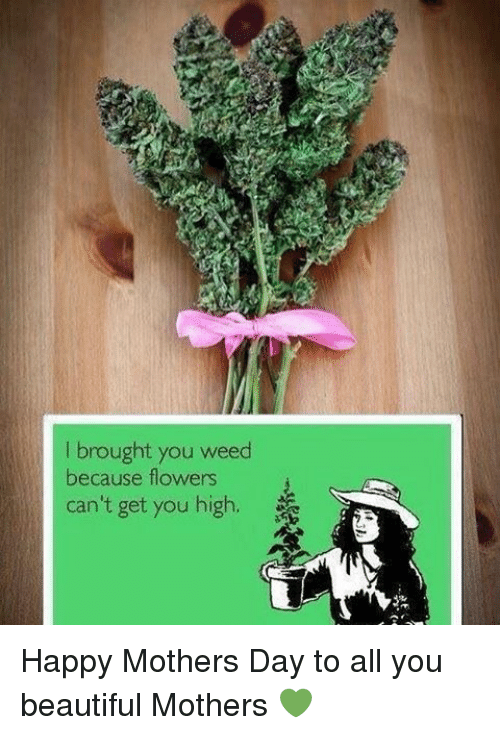 i brought you weed because flowers cant get you high 2406154 i brought you weed because flowers can't get you high happy