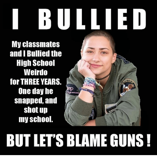 Guns, Memes, and School: I BULLIED  My classmates  and I Bullied the  High School  Weirdo  for THREE YEARS.  One day he  snapped, and  shot up  my school.  BUT LET'S BLAME GUNS!