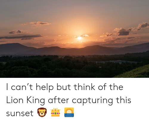The Lion King, Help, and Lion: I can't help but think of the Lion King after capturing this sunset 🦁 👑 🌅