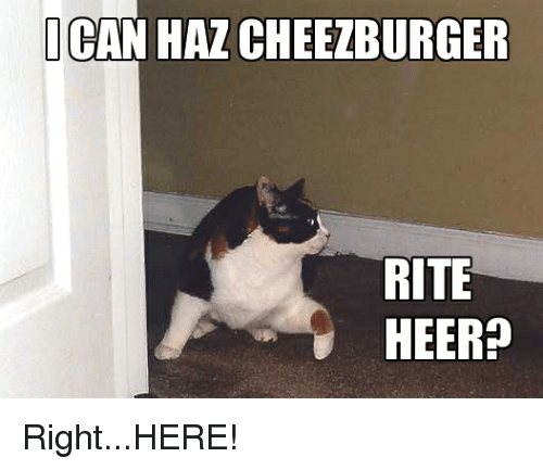 i can haz cheezburger rite heer right here 22695143 ✅ 25 best memes about i can haz cheezburger i can haz,Cheezburger Memes