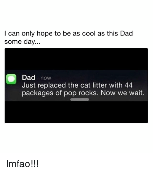 Dad, Memes, and Pop: I can only hope to be as cool as this Dad  some day..  Dad now  Just replaced the cat litter with 44  packages of pop rocks. Now we wait. lmfao!!!