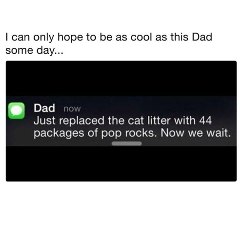 Dad, Dank, and Pop: I can only hope to be as cool as this Dad  some day...  Dad novw  Just replaced the cat litter with 44  packages of pop rocks. Now we wait.