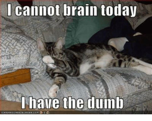 Dumb, Memes, and Brain: I cannot brain today  I have the dumb