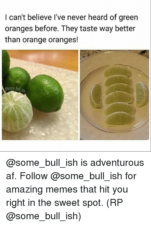 Af, Memes, and Orange: I can't believe I've never heard of green  oranges before. They taste way better  than orange oranges!  @some bull is @some_bull_ish is adventurous af. Follow @some_bull_ish for amazing memes that hit you right in the sweet spot. (RP @some_bull_ish)