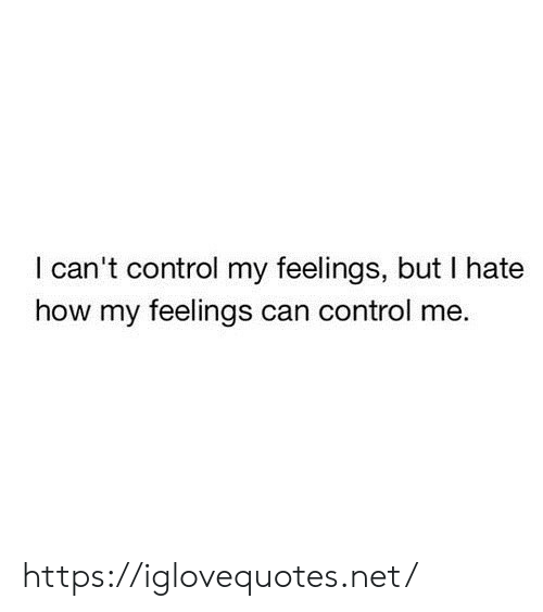 Control, How, and Net: I can't control my feelings, but I hate  how my feelings can control me. https://iglovequotes.net/