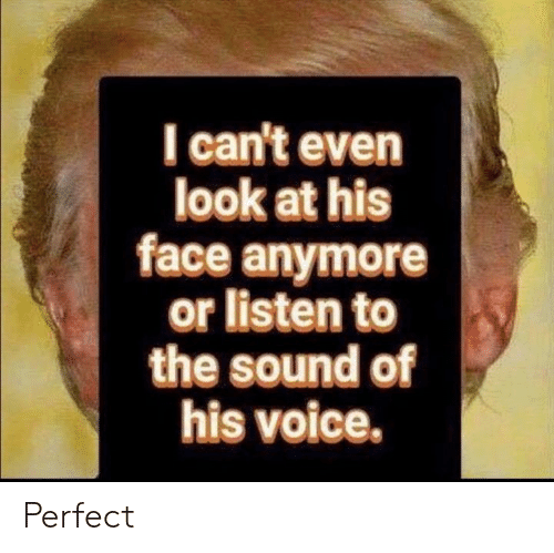 Voice, Sound, and Face: I can't even  look at his  face anymore  or listen to  the sound of  his voice. Perfect