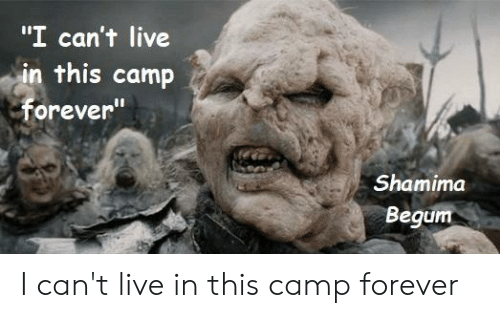 """Forever, Live, and Lord of the Rings: """"I can't live  in this camp  Forever  Shamima  Begum I can't live in this camp forever"""