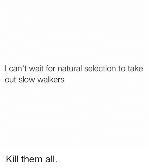 Funny, Natural Selection, and Them: I can't wait for natural selection to take  out slow walkers Kill them all.