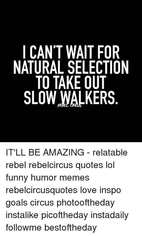 I Cant Wait For Natural Selection To Take Out Slow Walkers Itll Be