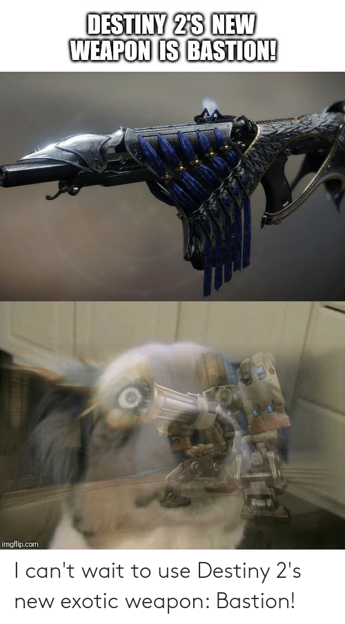 I Can't Wait to Use Destiny 2's New Exotic Weapon Bastion ...
