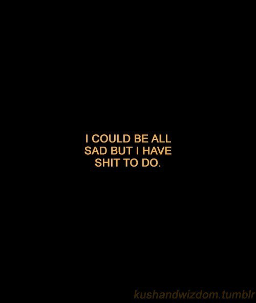 Shit, Tumblr, and Sad: I COULD BE ALL  SAD BUT I HAVE  SHIT TO DO.  kushandwizdom.tumblr