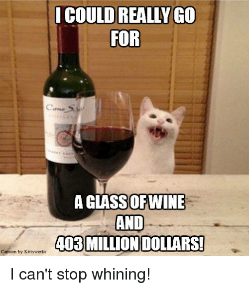 Memes, 🤖, and For: I COULD REALLY GO  FOR  A GLASSOFTWINE  AND  403 MILLION DOLLARS!  Caption by Kittyworks I can't stop whining!