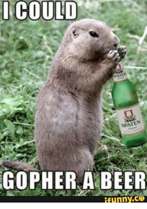 i could spat gopher a beer funny c3 15199885 ✅ 25 best memes about funny gopher funny gopher memes,Funny Groundhog Meme