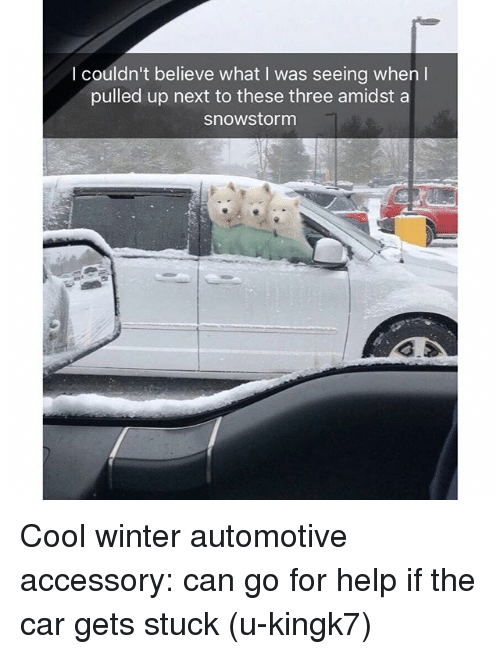 Funny, Winter, and Cool: I couldn't believe what I was seeing when l  pulled up next to these three amidst a  snowstorm Cool winter automotive accessory: can go for help if the car gets stuck (u-kingk7)