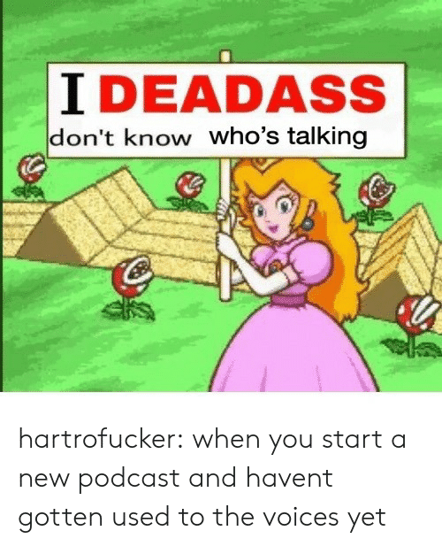 Tumblr, Blog, and Deadass: I DEADASS  don't know who's talking hartrofucker: when you start a new podcast and havent gotten used to the voices yet