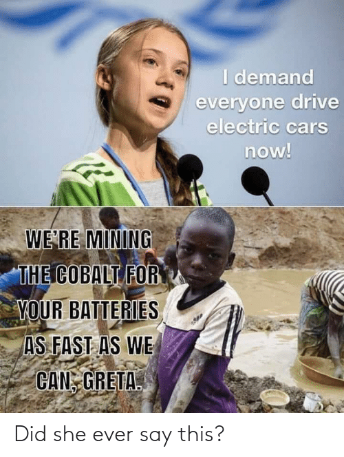 i-demand-everyone-drive-electric-cars-now-we-re-mining-67465243.png