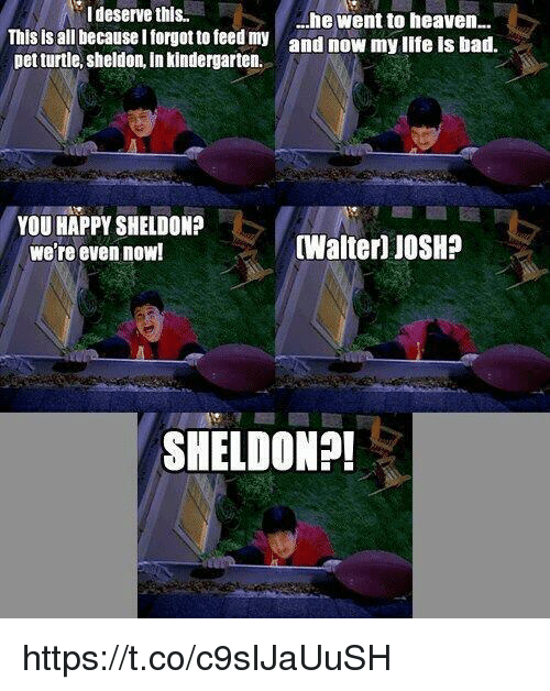 Bad, Heaven, and Happy: I deserve this.  This is all because I torgot to teed my  pet turtle, sheldon, in kindergarten.  ...he went to heaven  and now my llfe Is bad.  YOU HAPPY SHELDON?  we're even now!  Walter) JOSH?  SHELDON?! https://t.co/c9sIJaUuSH