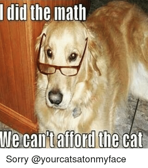Cats, Dogs, and Sorry: I did  the math  We can't afford the cat Sorry @yourcatsatonmyface