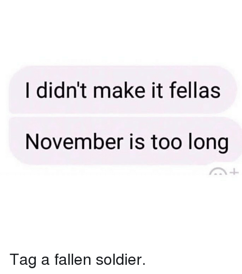 Memes, 🤖, and Fallen: I didn't make it fellas  November is too long Tag a fallen soldier.