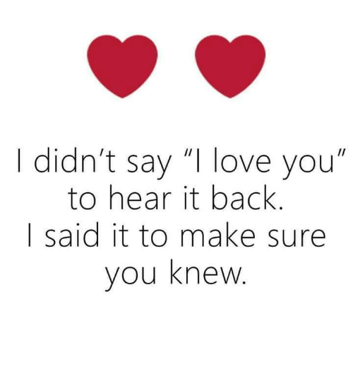 I Didnt Say I Love You To Hear It Back Said It To Make Sure You