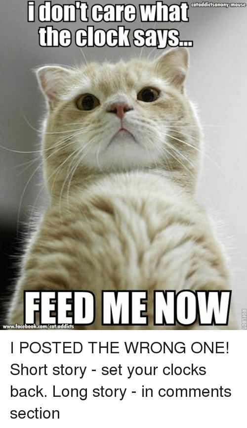 Clock, Facebook, and Memes: i don't care what  cataddictsanony-mouse  the clock saysm  FEED ME NOW  www.facebook.com/cat.addicts I POSTED THE WRONG ONE! Short story - set your clocks back. Long story - in comments section