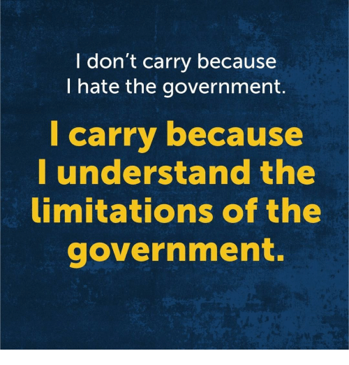 Memes, Government, and 🤖: I don't carry because  I hate the government.  lcarry because  I understand the  limitations of the  government.