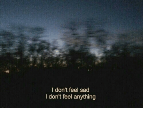 Sad, Feel, and Anything: I don't feel sad  I don't feel anything