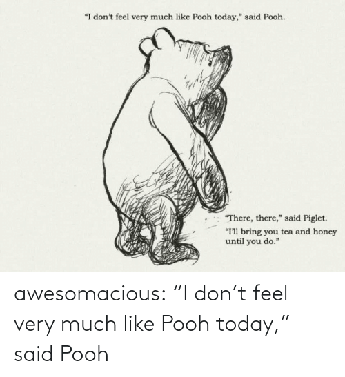 """Tumblr, Blog, and Today: """"I don't feel very much like Pooh today,"""" said Pooh.  """"There, there,"""" said Piglet.  """"I'll bring you tea and honey  until you do."""" awesomacious:  """"I don't feel very much like Pooh today,"""" said Pooh"""