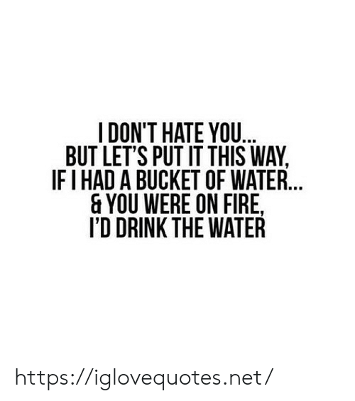 Fire, Water, and Net: I DON'T HATE YOU..  BUT LET'S PUT IT THIS WAY  IFI HAD A BUCKET OF WATER..  & YOU WERE ON FIRE  I'D DRINK THE WATER https://iglovequotes.net/