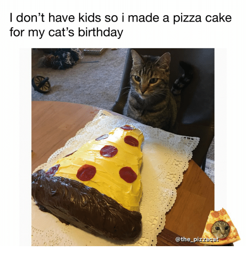 Birthday Cats And Pizza I Dont Have Kids So Made