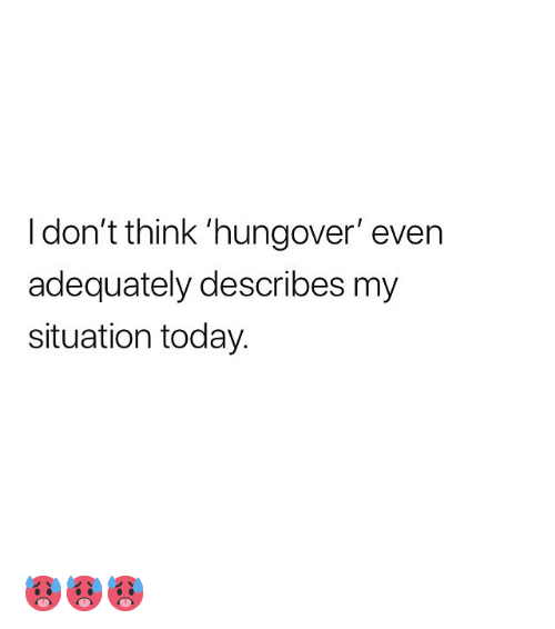 Memes, Today, and 🤖: I don't think 'hungover' even  adequately describes my  situation today. 🥵🥵🥵
