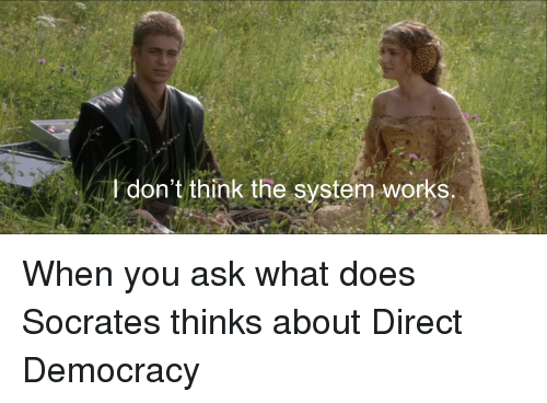 History, What Does, and Democracy: I don't think the system works