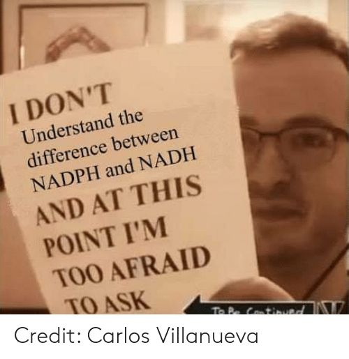 Memes, 🤖, and Ask: I DON'T  Understand the  difference between  NADPH and NADH  AND AT THIS  POINT I'M  TOO AFRAID  TO ASK Credit: Carlos Villanueva