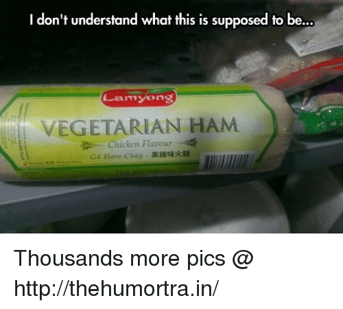 Dank, Chicken, and Http: I don't understand what this is supposed to be...  Lam Yong  VEGETARIAN HAM  Chicken Flavour Thousands more pics @ http://thehumortra.in/