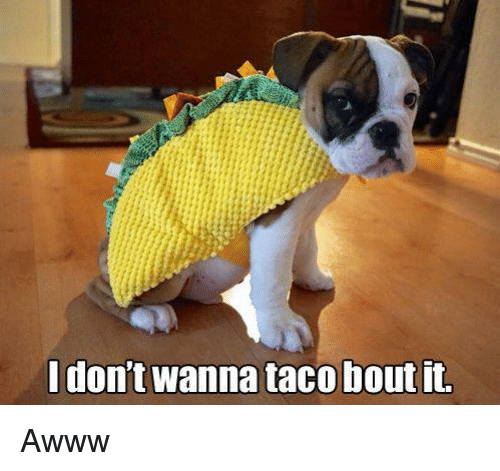 I Dont Wanna Taco Bout It